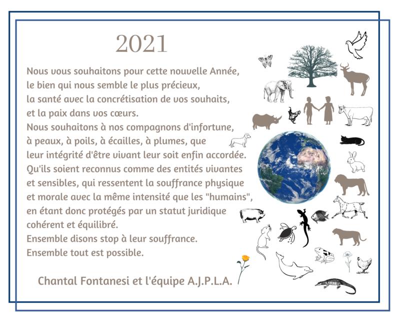 Illustration pour l'actualité 2021