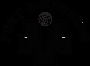 Logo de l'association VOLLEY BEACH BALL PONT A MOUSSON