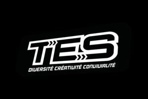 Logo de l'association TOUT EN SCENE