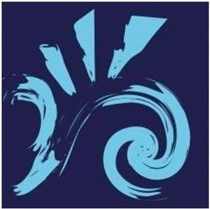 Logo de l'association VAGUES DE SOLEIL