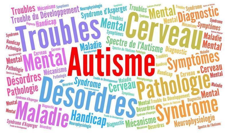 Illustration pour la mission Chef de projet bénévole pour lieu éducatif jeunes autistes
