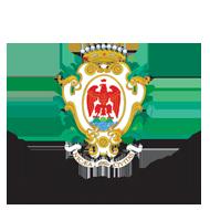 Logo de l'acteur public VILLE DE NICE